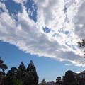 Photos: ゴジラの雲