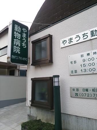 【記録】ViVi っち、ワクチン接種@ 山内動物病院1