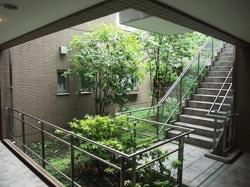 ガーデン渋谷氷川~庭1