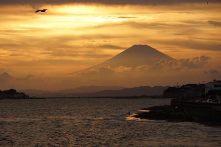 富士山とトビ120909