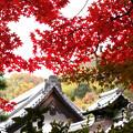 写真: 紅葉と屋根!2012k