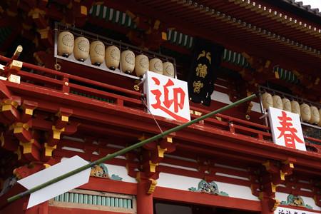 迎春、鎌倉鶴岡八幡宮!2013