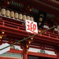 Photos: 迎春、鎌倉鶴岡八幡宮!2013