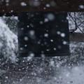 Photos: 称名寺鐘楼の雪景色!2013