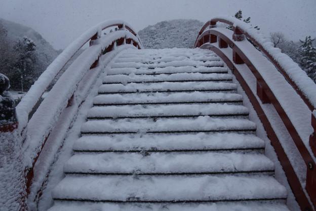 Photos: 雪の反り橋を渡る!2013