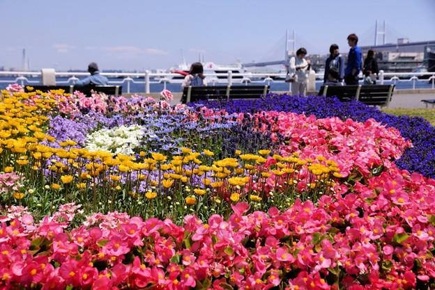 花まつり開催!