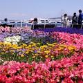 Photos: 花まつり開催!