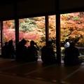 写真: 蓮華寺の額縁紅葉131201