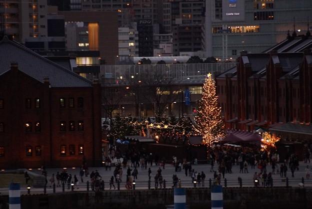 赤レンガクリスマスツリー131224