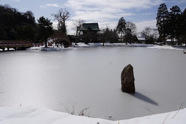 写真: 真っ白になった称名寺庭園!140209