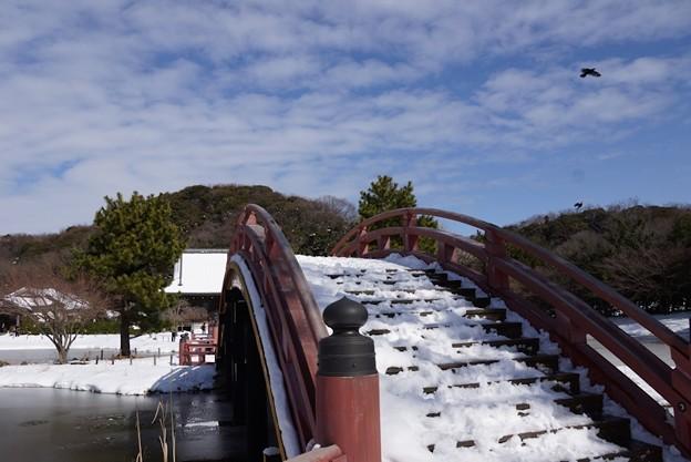 雪の称名寺反橋!140209