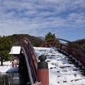 写真: 雪の称名寺反橋!140209