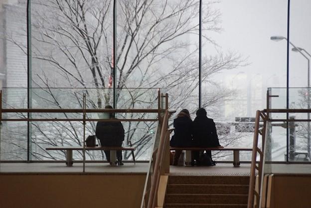 大雪の横浜の景色!20140214