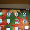 Photos: iPad miniに保存した写真は