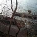 写真: 湖畔の温泉