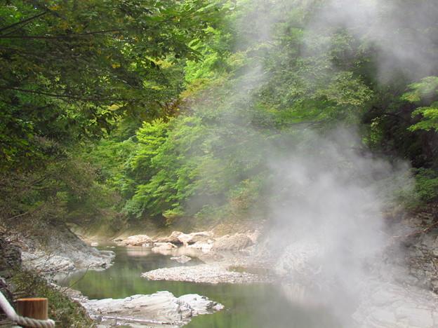 緑のなかの渓谷