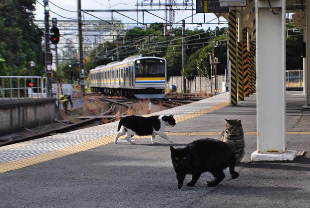電車が来るぞ・・