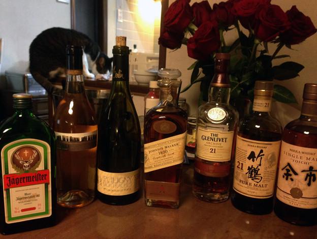 猫と洋酒イロイロ