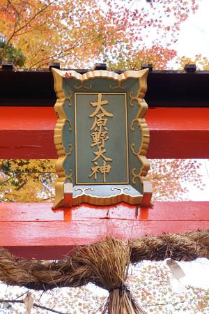 大原野神社 - 05