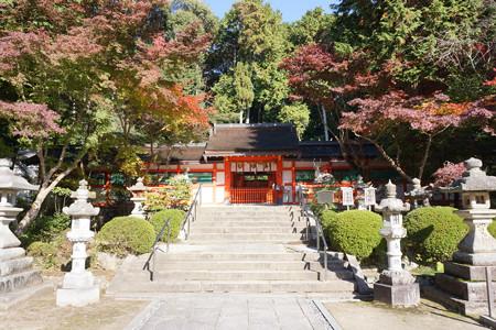 大原野神社 - 08
