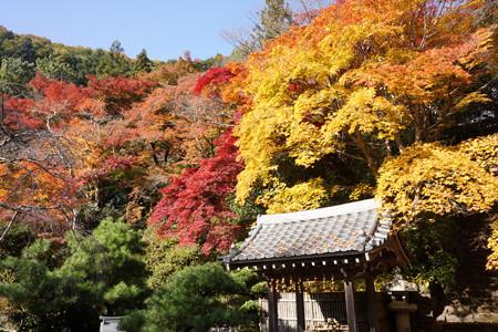金蔵寺 - 05