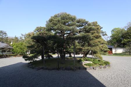 京都御苑・閑院宮邸跡 - 04