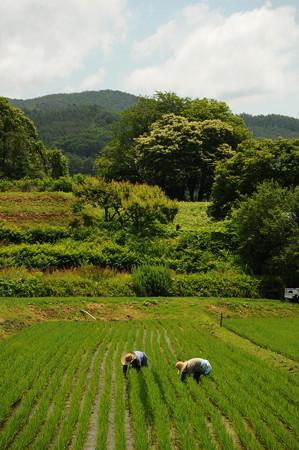ishihatookanagoshi0006
