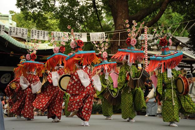 写真: DSC_ojidengaku0044