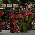 写真: DSC_ojidengaku0065