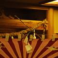 写真: DSC_yokoyamayoi0140