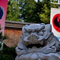 熊野本宮大社社殿前の狛犬阿形