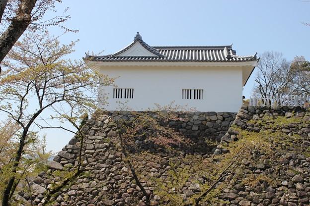 亀山城・多門櫓(3) - 写真共有サ...