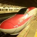 E6系やまびこ217号 雨の宇都宮駅に到着