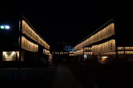 高台寺夜間特別拝観5