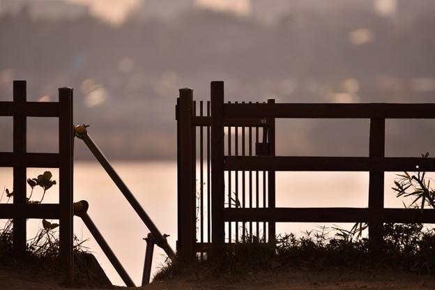 夕景黄昏-印旛沼-