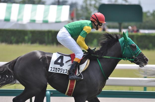 Suzuka Majesta 04