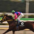 Photos: Meisho Kadomatsu 02