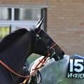 Hammerklavier12