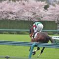 Adeyaka Komachi 09