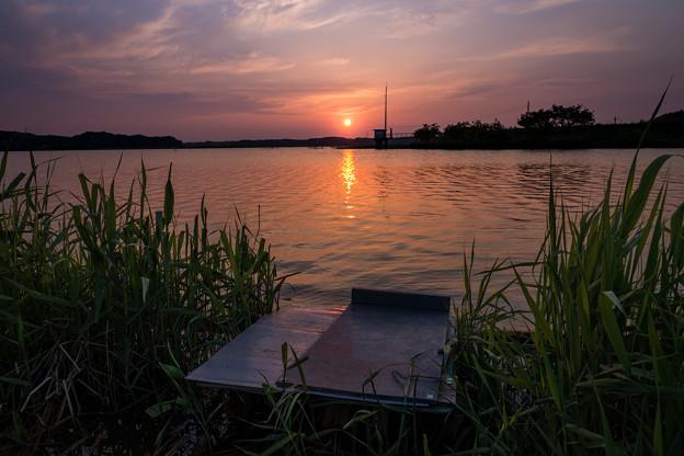 印旛沼の夕日4