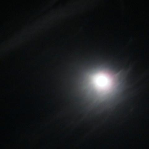 中秋の月は堂々煌々