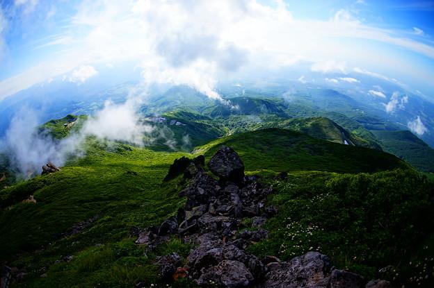 世界遺産の白神山地へと続く森