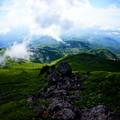 Photos: 世界遺産の白神山地へと続く森
