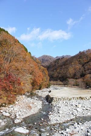 丹沢湖紅葉3-1