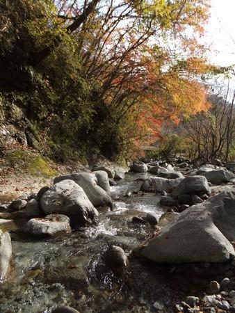 丹沢湖紅葉3-5