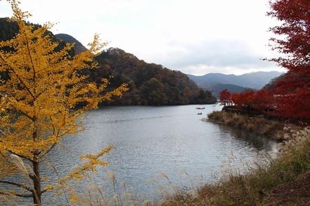 丹沢湖紅葉4-1