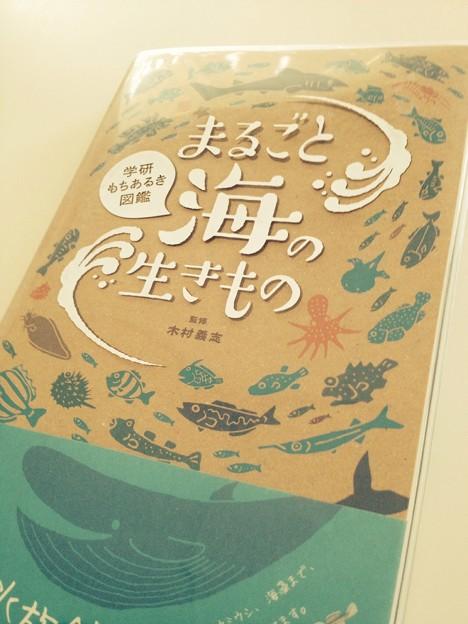 まるごと海の生もの 01