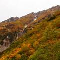 弓折岳の錦秋の壁