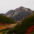 双六テン場を見下ろす鷲羽岳