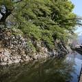 写真: 130506-6中部地方ツーリング・高島城・堀